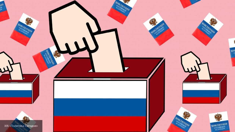 Общественный наблюдатель из Мордовии высоко оценила голосование по поправкам на дому