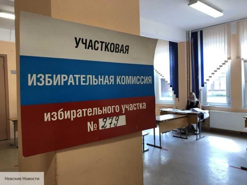 Иностранные наблюдатели следят за голосованием в Петербурге