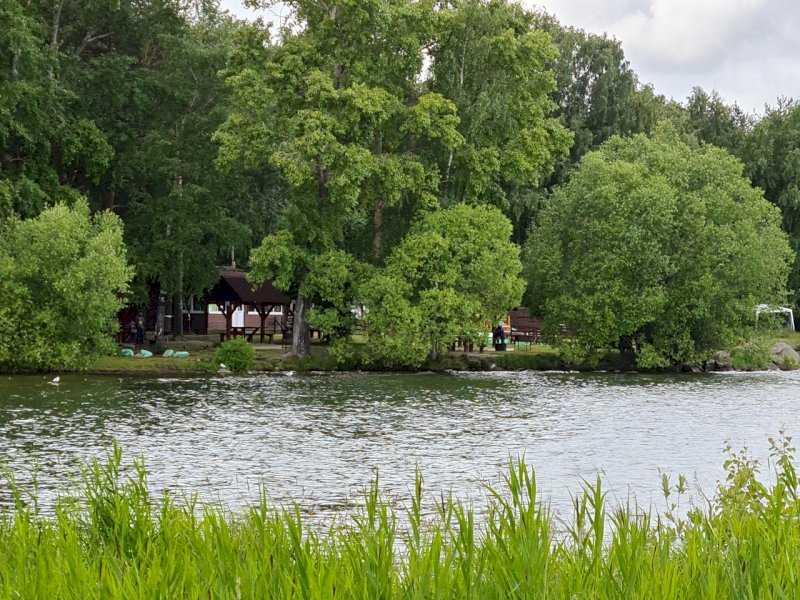 «Самая большая скамейка в России», которая отрежет берег озера Шарташ от людей (ВИДЕО)